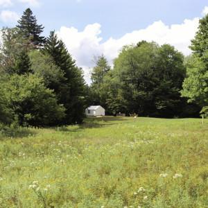 tentrr-campsite-and-field